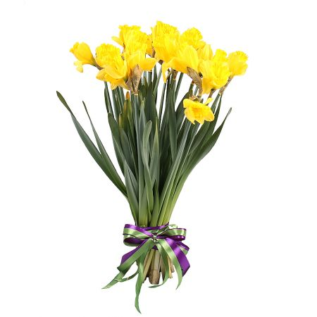 Bouquet 19 daffodils