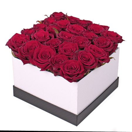 Bouquet 25 roses in a box