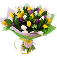 Bouquet  35 tulips