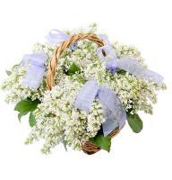Bouquet White sea