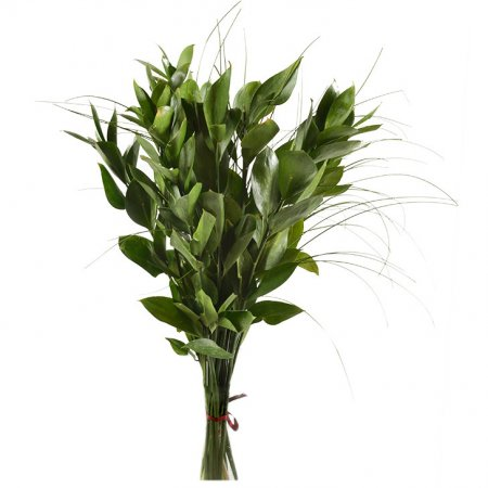 Product Additional greenery