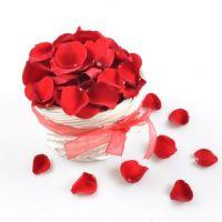 Bouquet Arrangement Rose Petals
