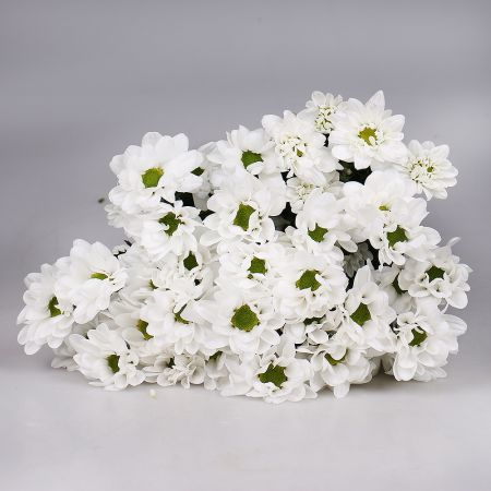 Bouquet Wholesale ОПТОМ Chrysanthemum Chic