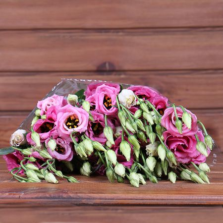 Product Whosale Eustoma Double Rosita Pink