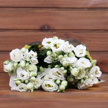 Product Whosale Eustoma Rosita White