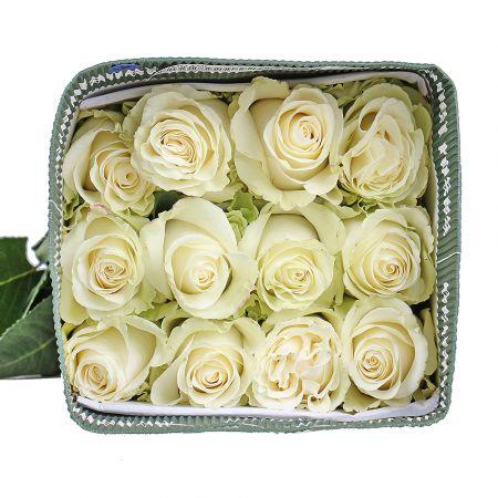Product Wholesale Rose Mondial (Ecuador)