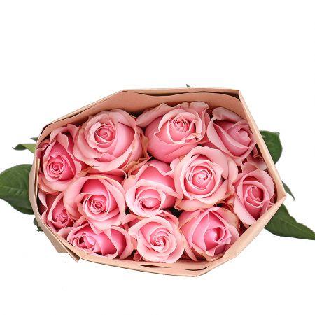 Product Wholesale Rose Titanic (Ecuador)