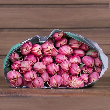 Product Wholesale Tulips Columbus Double