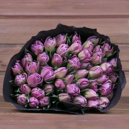 Product Wholesale Tulips Double Princess