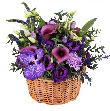 Bouquet Plum present