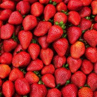 Spring promo: fresh strawberry as a gift!